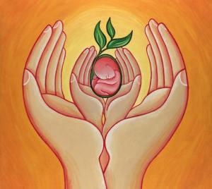 baby-in-hands1